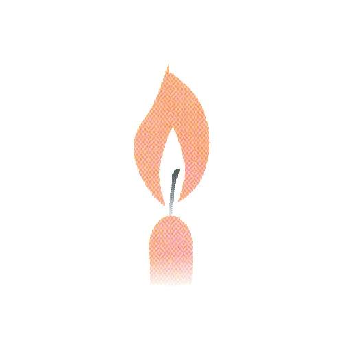 D-Svíčky -apricot 10ks /31104